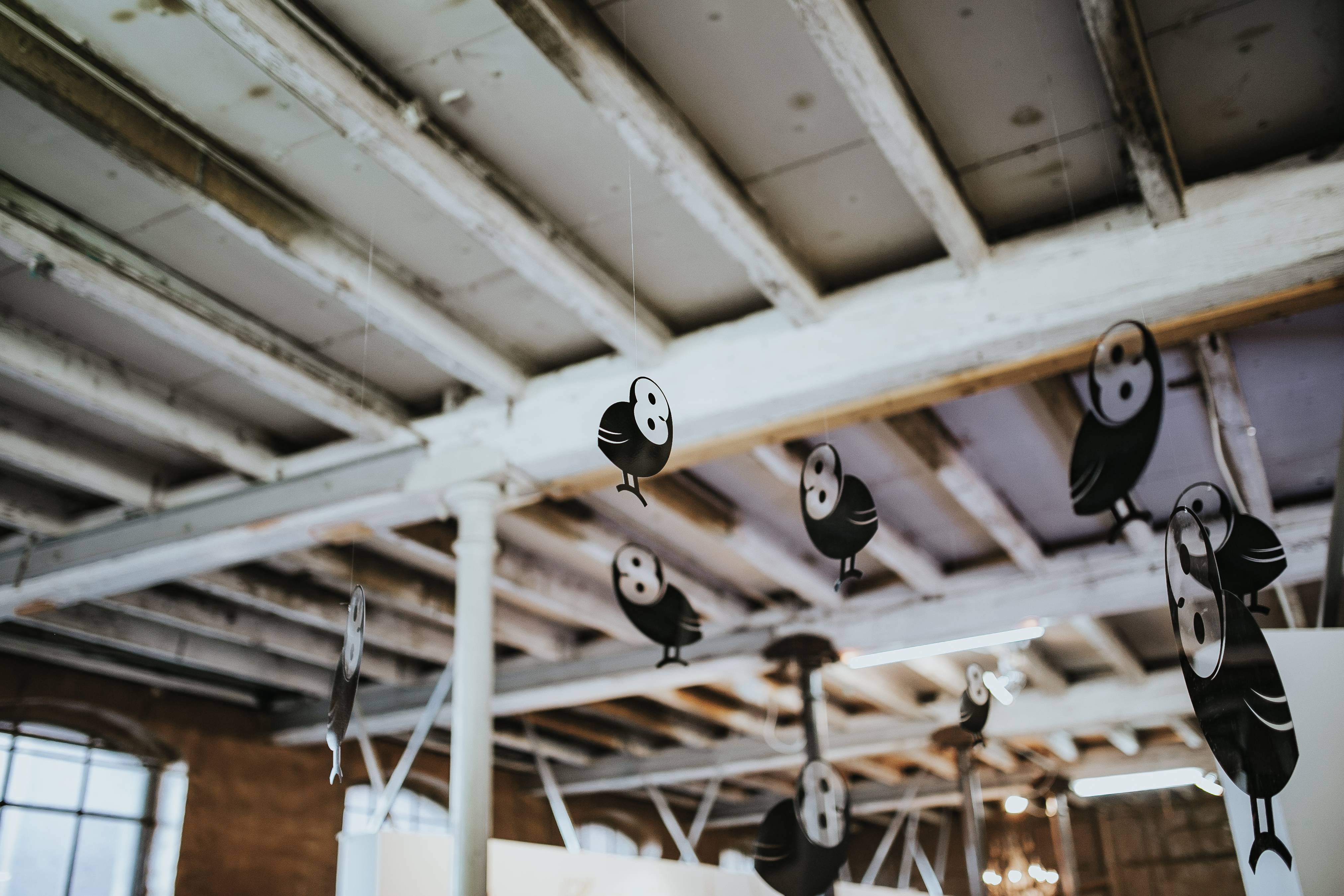 ideas para decoracin de techos altos