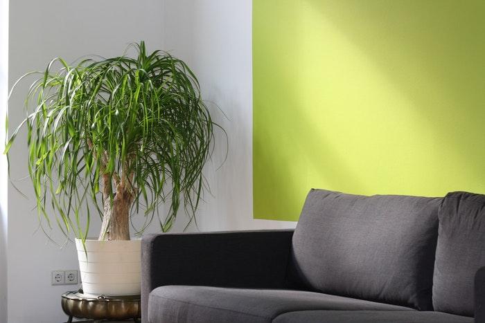colores para decorar un piso pequeño